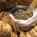 voedsel-met-koolhydraten